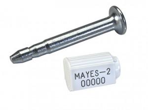 mayes2